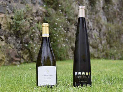 nuestros-vinos-3